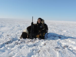 Musk Ox Hunt in snow 2018