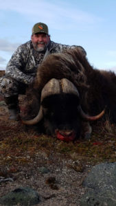 Amazing Musk Ox Hunt 2018